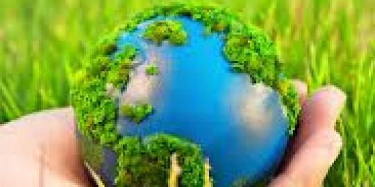 Екологія навколишньго середовища